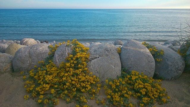 Une plage déserte à Ibiza
