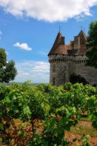 Dégustation de vin en Dordogne